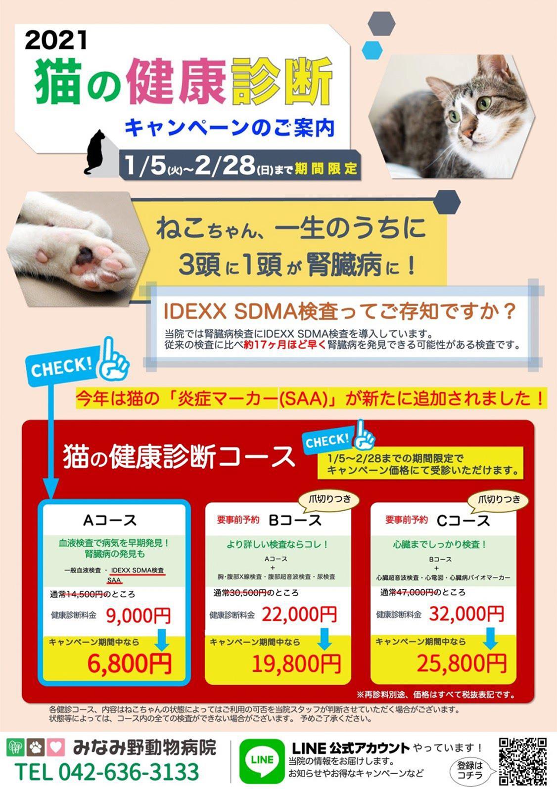 2021ねこちゃんの健康診断キャンペーン